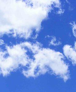Diseño cielo