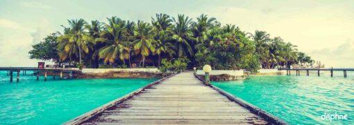 Diseño isla