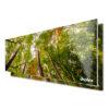 Diseño bosque